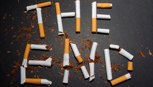3 Body Organs Damaged Due to Smoking