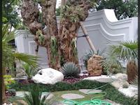 Jasa Taman Murah di Wonogiri   Tukang Buat Taman dan Kolam Koi di Wonogiri Murah