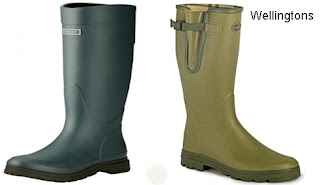 wellingtons, wellingtons shoes