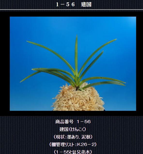 http://www.fuuran.jp/1-56.html