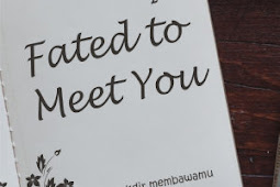 Fated To Meet You by Ally Jane