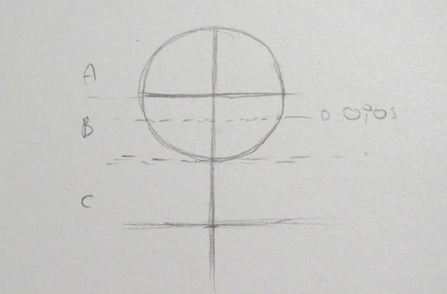 Línea que determina la altura de los ojos en la segunda parte del eje central dentro del círculo
