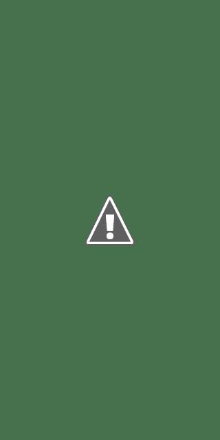 Ensuite, lorsque vous cliquez sur « voir les nouvelles performances de profil » vous devriez voir un écran qui ressemble à ceci: