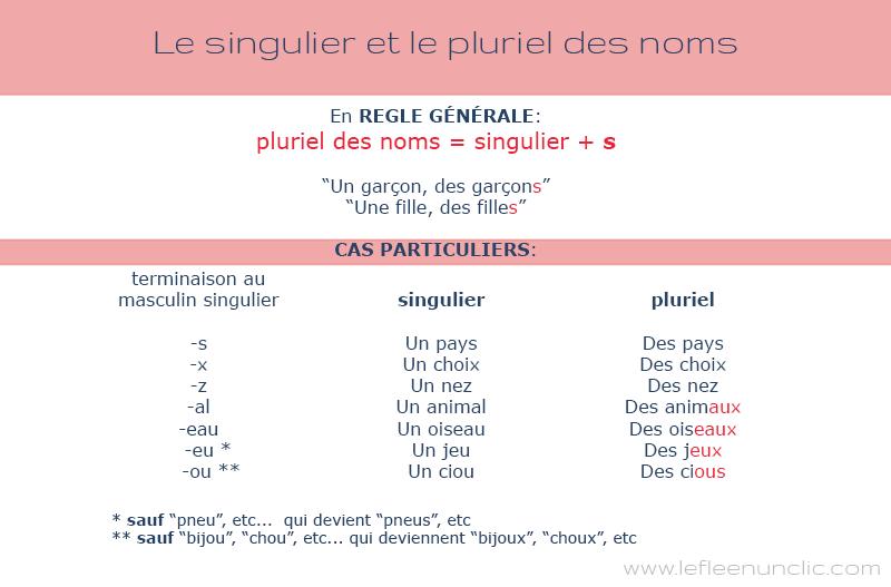 Le singulier et le pluriel des noms en français infographie fle