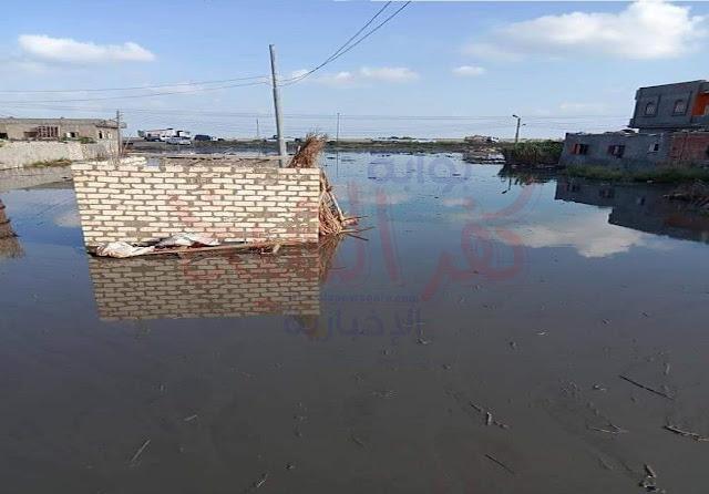 جانب من غمر مياه بحيرة البرلس للقرية