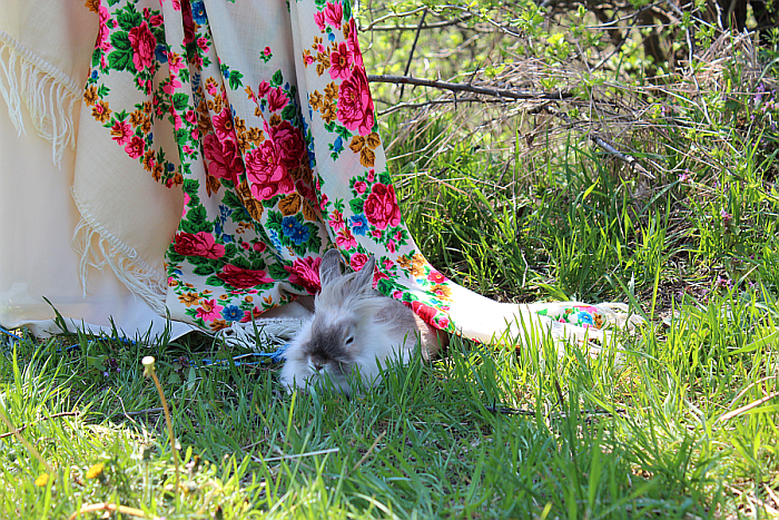 my adorable per rabbit and ethnic scarf in grass