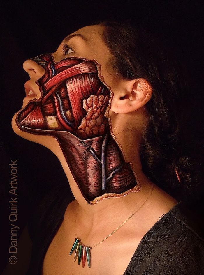 10-Danny-Quirk-Anatomy-Explored-with-Body-Painting-www-designstack-co
