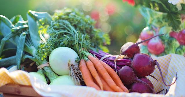 Jak przechowywać warzywa, aby był dłużej świeże?
