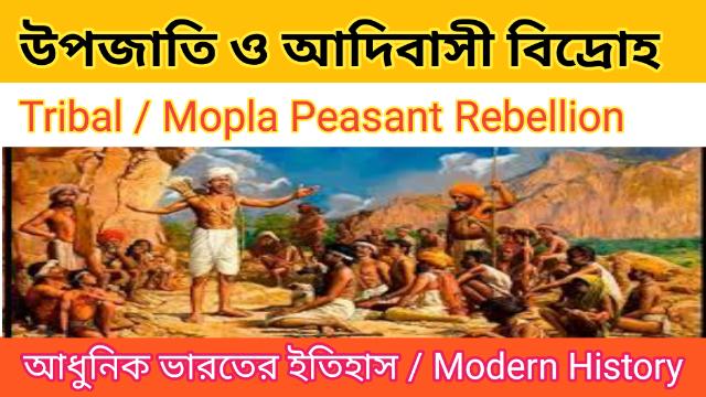 Tribal Rebellion | আদিবাসী বিদ্রোহ | Modern Indian History