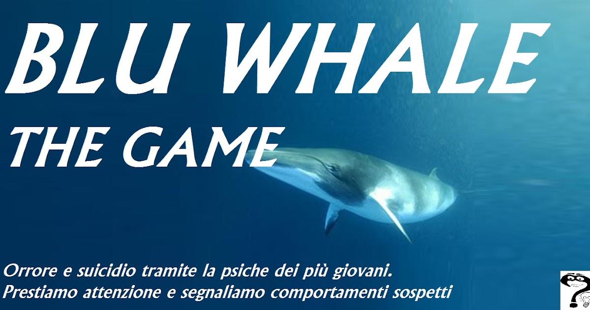 Matrimonio Rituale Romano : Russia blue whale gioco suicidio
