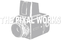 Web & App | The Pixal Works