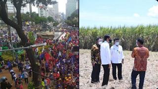 Istana Diserbu Buruh, Jokowi Terbang Jauh ke Sulawesi Tenggara Tinjau Kebun Tebu
