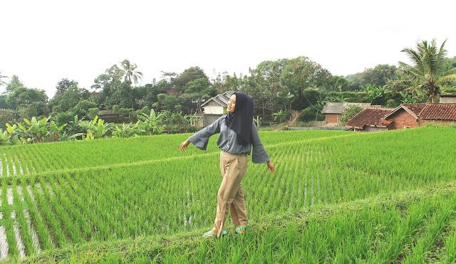 sawah explore garut