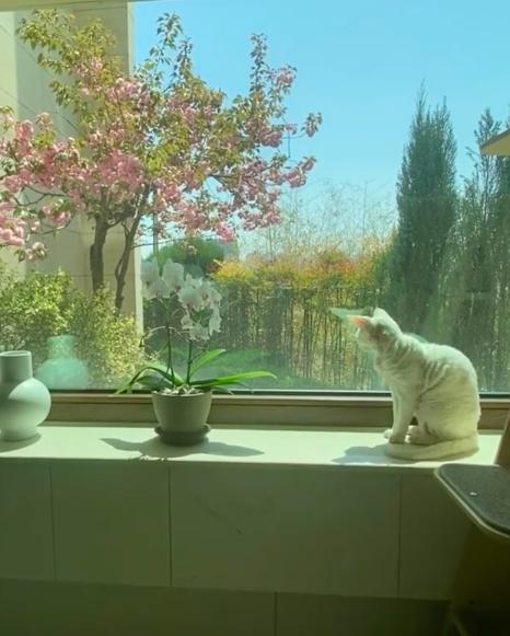 Taeyang evinin penceresinden manzarasını paylaştı