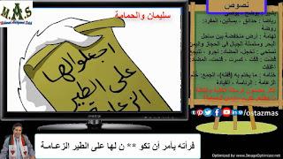 غلاف شرح نص سليمان والحمامة - نصوص الصف الأول الإعدادي الفصل الدراسي الأول