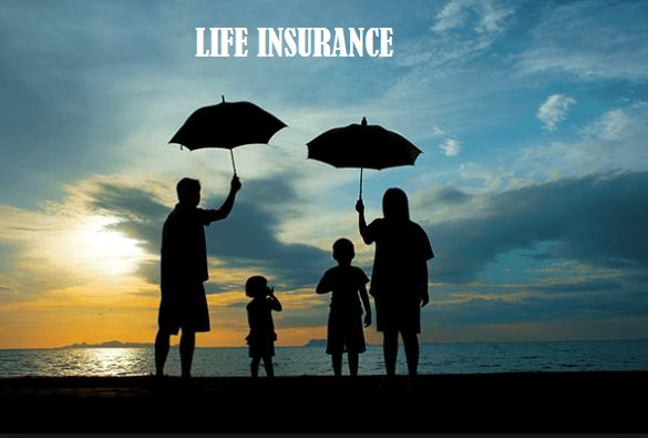 Darcy Bergen Discusses Life Insurance Needs After Retirement And What To Consider When Making A Decision