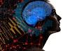El consumo moderado de cannabis tiene efectos negativos en el funcionamiento cognitivo