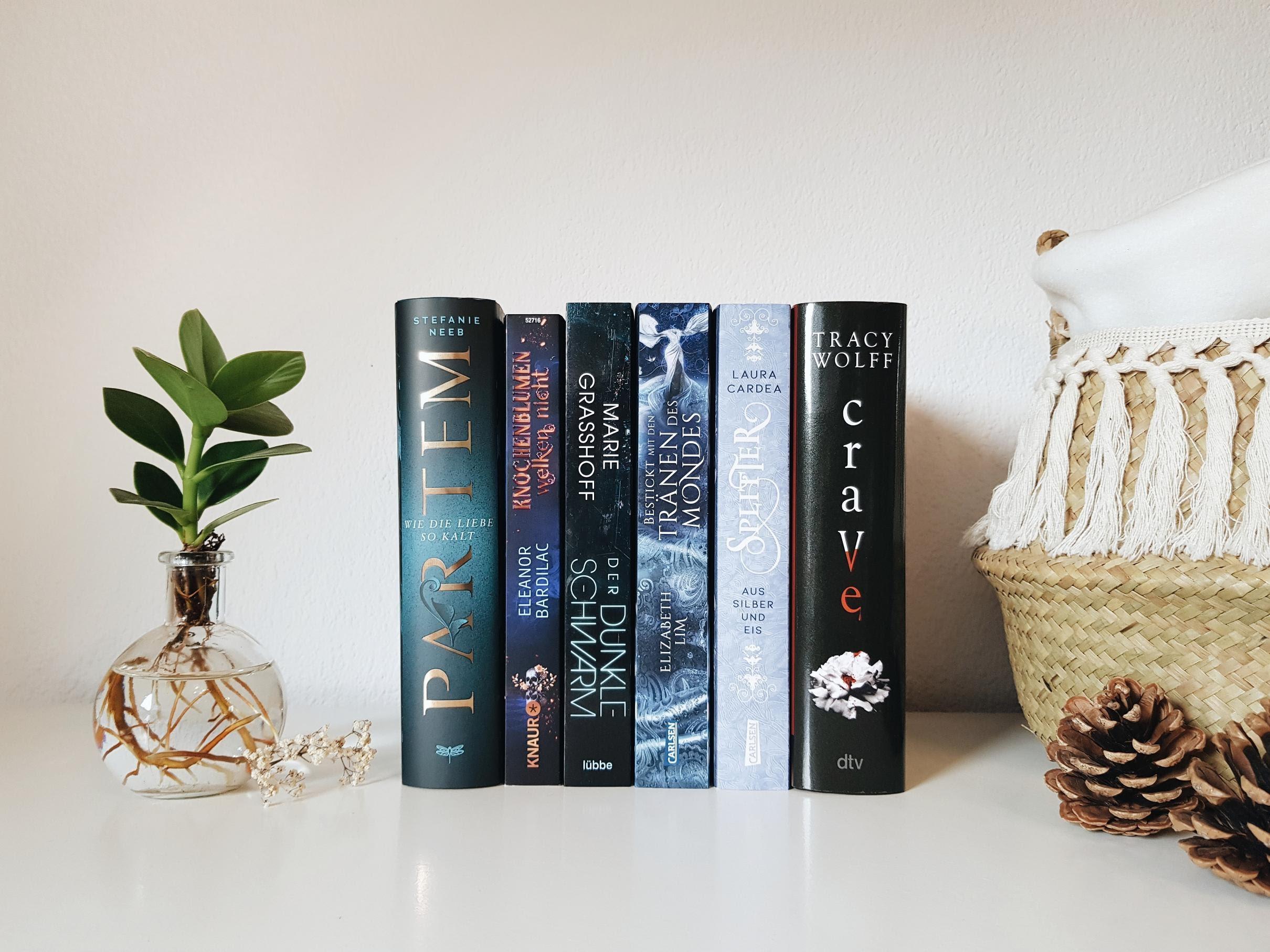 Bücherblog. Neuzugänge Bücher. Jugendbuch. Fantasy. Juli 2021.