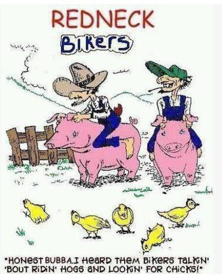 Hillbillies And Rednecks |Redneck Christmas Cartoons
