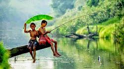 Kinh nghiệm câu cá ao hồ sông suối nước ngọt
