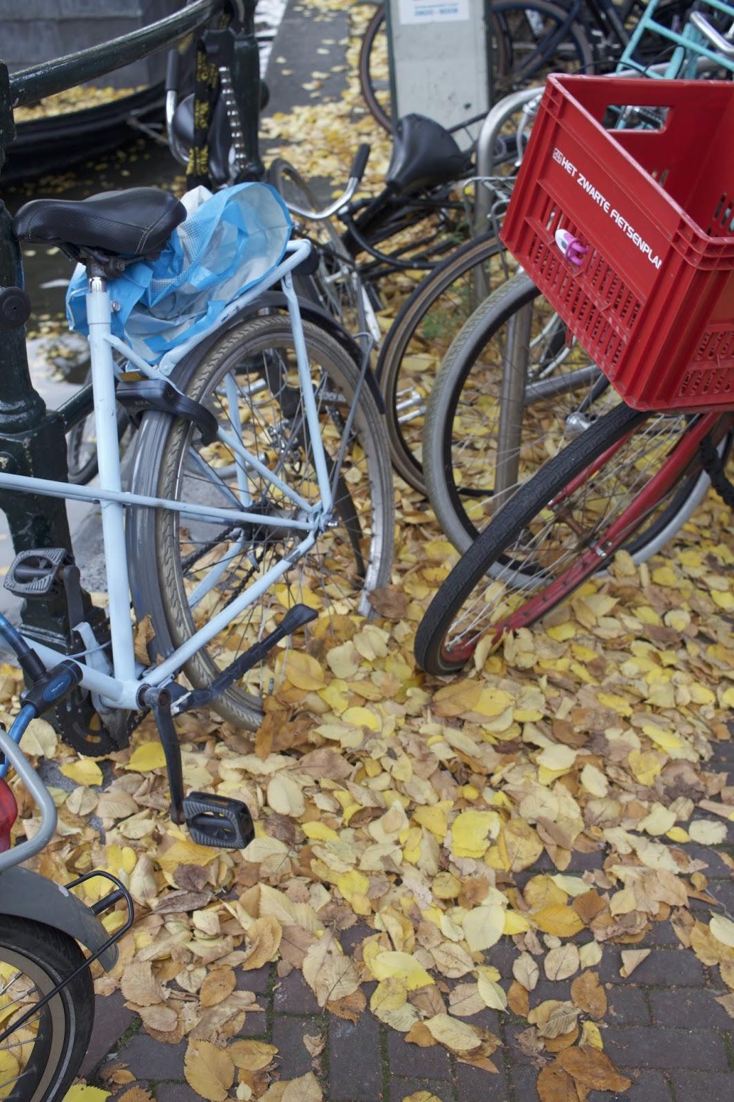 Amsterdamin plussat ja miinukset