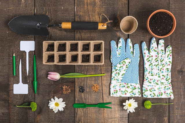 Cutting Flower Garden tools and flowers