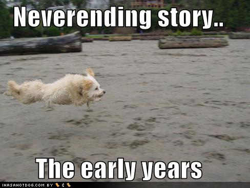 Funny wallpapers|HD wallpapers: funny dog stories