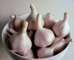 Ternyata bawang putih sangat ampuh bisa ngobatin sipilis