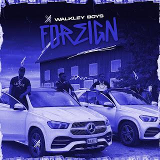 DOWNLOAD MP3: Walkley Boyz - Foreign