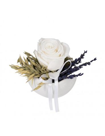 rose stabilizzate bomboniere