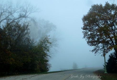 Gentle Joy Photography Shrouded In Fog Part 1