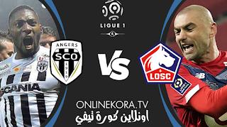 مشاهدة مباراة أنجيه وليل بث مباشر اليوم 23-05-2021 في الدوري الفرنسي