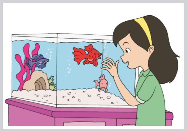 Dayu dan Ikan Hias