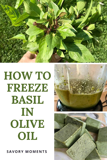 Collage of a photo of fresh Thai basil, Thai basil and olove oil pureed in a blender, and then Thai basil frozen cubes.