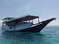 5 Tips yang Patut Dicoba Saat Hendak Sewa Kapal Labuan Bajo Ke Pulau Komodo
