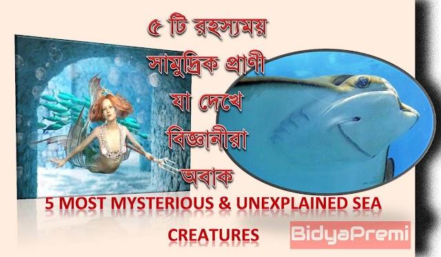 ৫ টি রহস্যময় সামুদ্রিক প্রাণী, যা দেখে বিজ্ঞানীরা অবাক । 5 Most Mysterious & Unexplained Sea Creatures