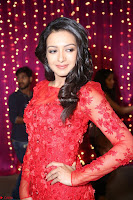 Catherine Tresa in red transparent gown at Zee Telugu Apsara Awards 2017 11.JPG