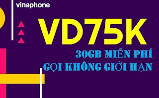 Gói VD75K Vinaphone