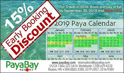 deals, 2019, deals, early booking special, specials, #payabayresort, #payabay, paya bay resort,