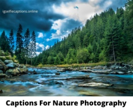 Captions For Nature Photography