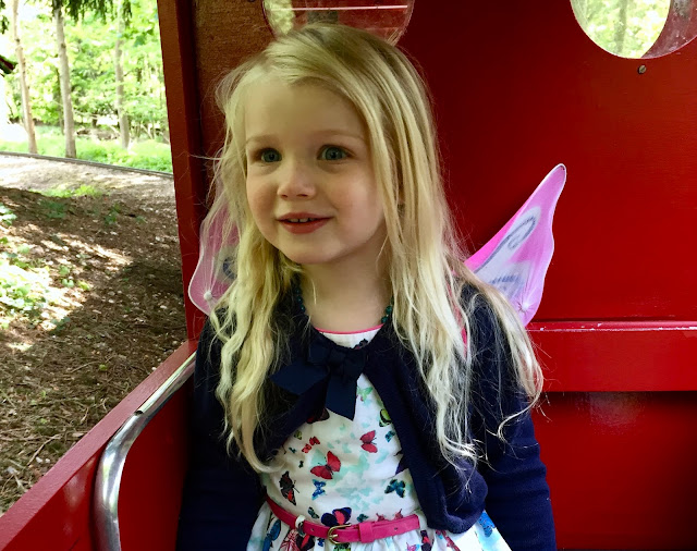 M as a 3 year old in fairy wings sitting on the Audley End Miniature Railway red train looking amazed and believing in the magic in everyday