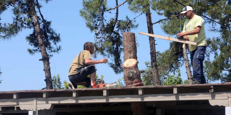 Με εντατικούς ρυθμούς κοπές δέντρων και καθαρισμοί ρεμάτων μετά τη φονική καταιγίδα