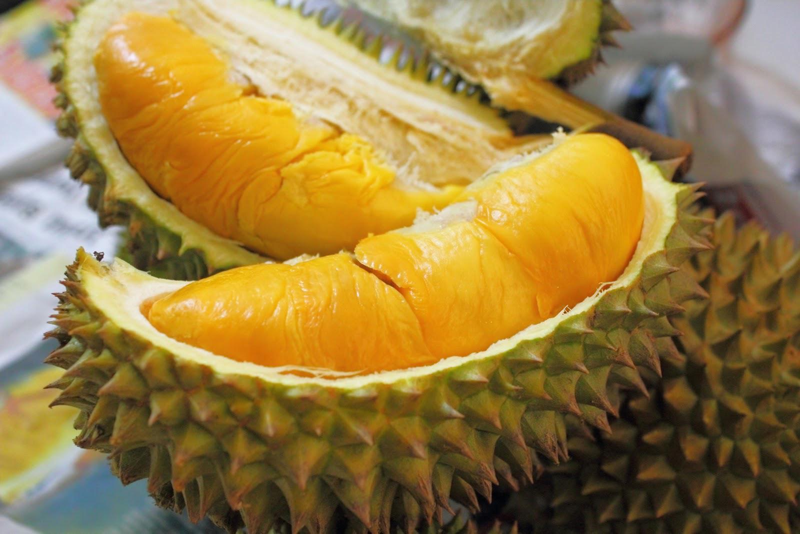 Manfaat Buah Durian Untuk Kesehatan dan Kecantikan