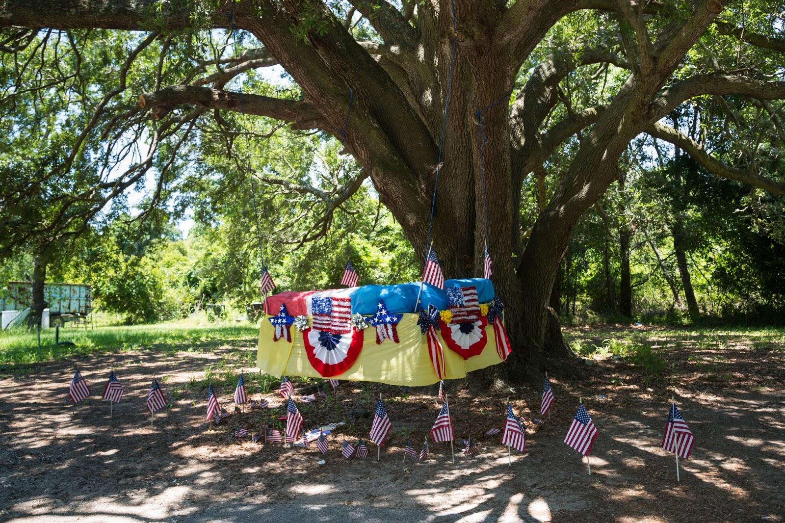 Charleston Daily Photo Edisto Mattress Swing