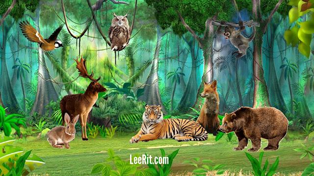 Giáo án chương trình đổi mới Đề tài: Động vật sống trong rừng