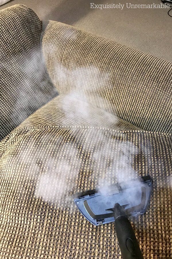 Steam Cleaning Couch Cushions