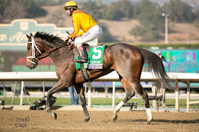 Past The Grandstand Oaks Contender Dreaming Of Julia