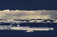 The calving front of the Totten ice shelf. (Credit: Australian Antarctic Division) Click to Enlarge.