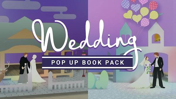 Filmstocks Wedding Pop Up | Filmora Effects