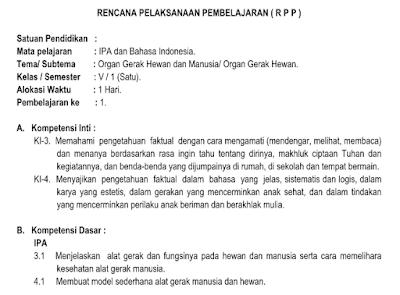RPP Kelas 5 Tema 1 Organ Gerak Hewan dan Manusia K13 Revisi 2018